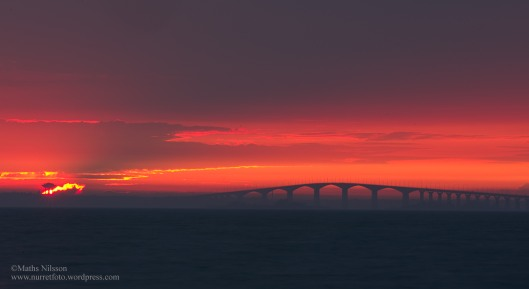 Ölandsbron solnedgång MNI_8690_redigerad-2